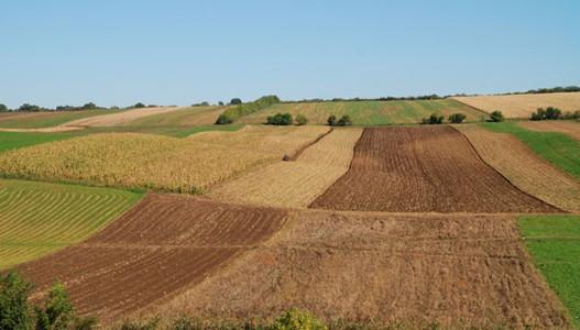 Резултат слика за пољопривредно земљиште