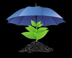 регресирање осигурања усева
