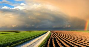regresiranje osiguranja u  poljoprivredi