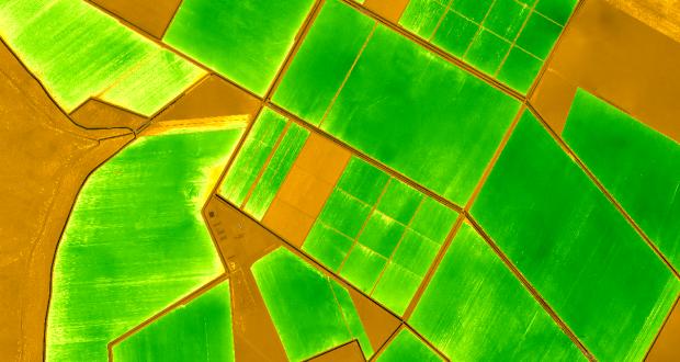 precizna poljoprivreda